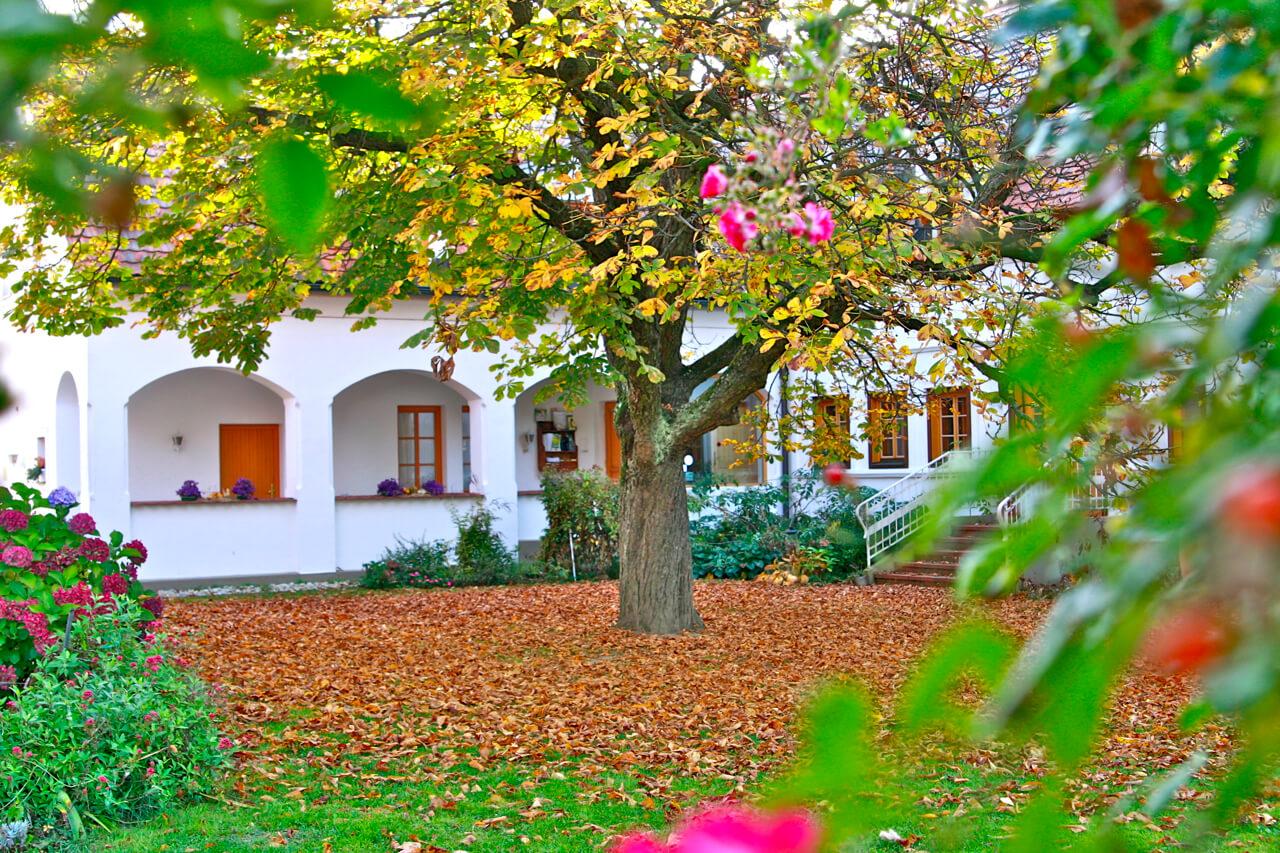 Herbst-im-Hotel-Landhofmühle
