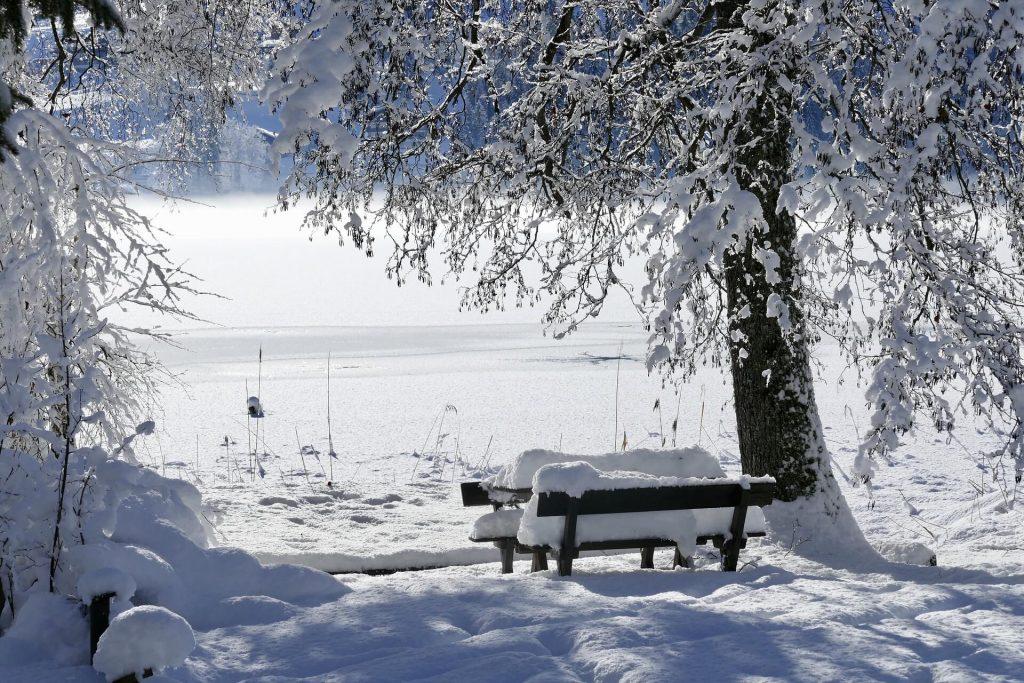 Naturidyll Hotels schneebedeckter Teich mit Parkbank