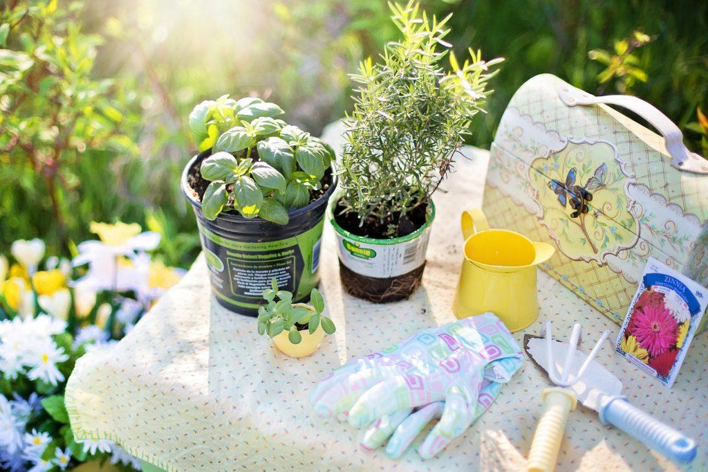 Naturidyll Hotels Pflanzen Garten