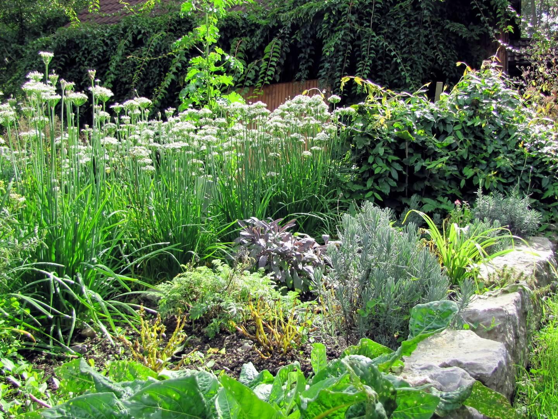 Gartenbrunch im Steinschalerhof