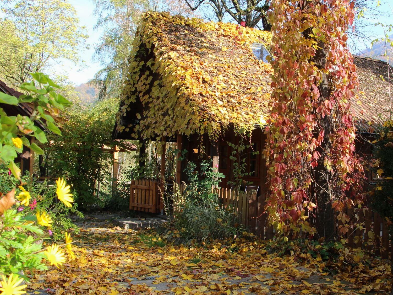 Naturidyll Hotel Steinschalerhof im Herbst