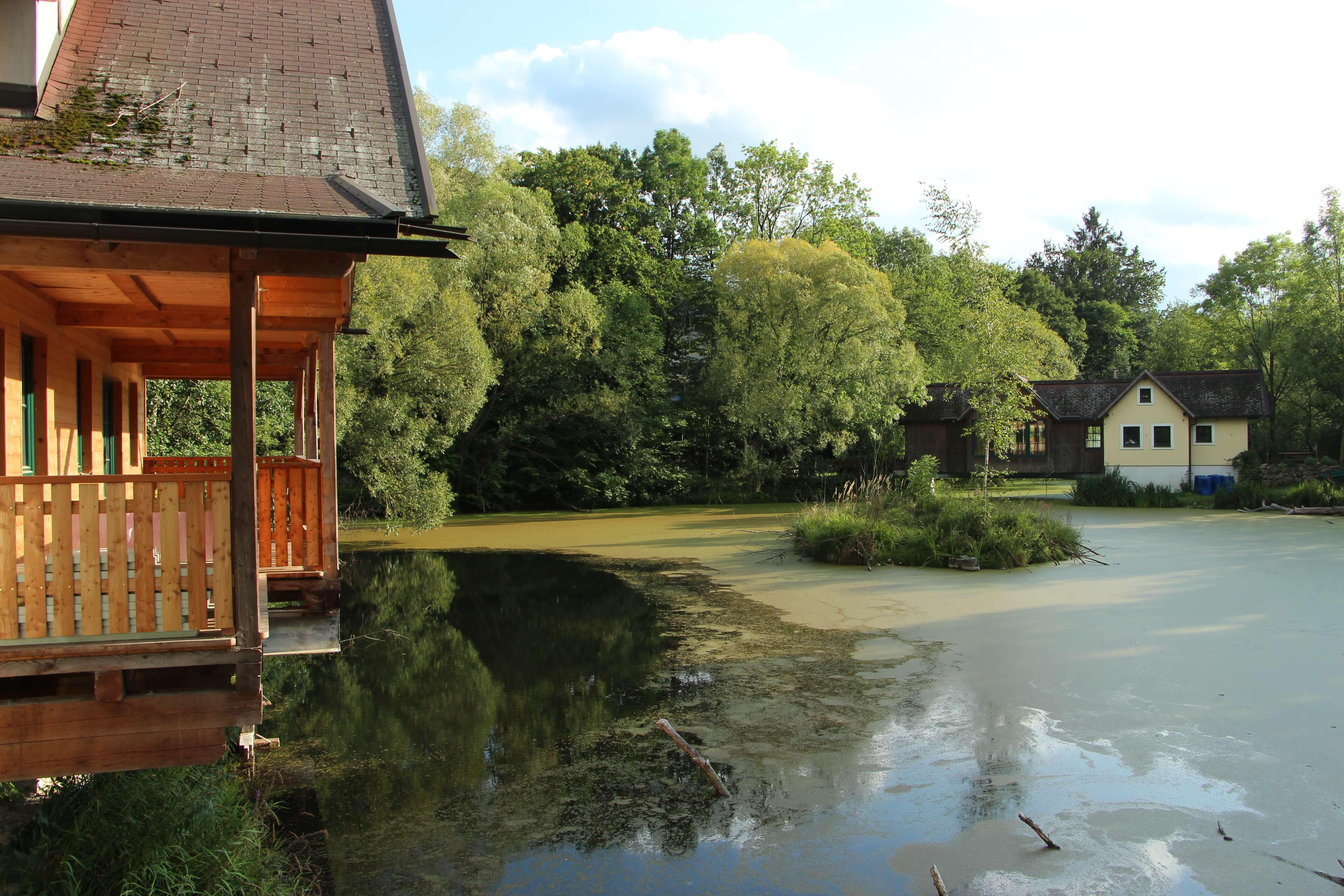 Wassergartenhaus im Naturidyll Hotel Steinschalerhof