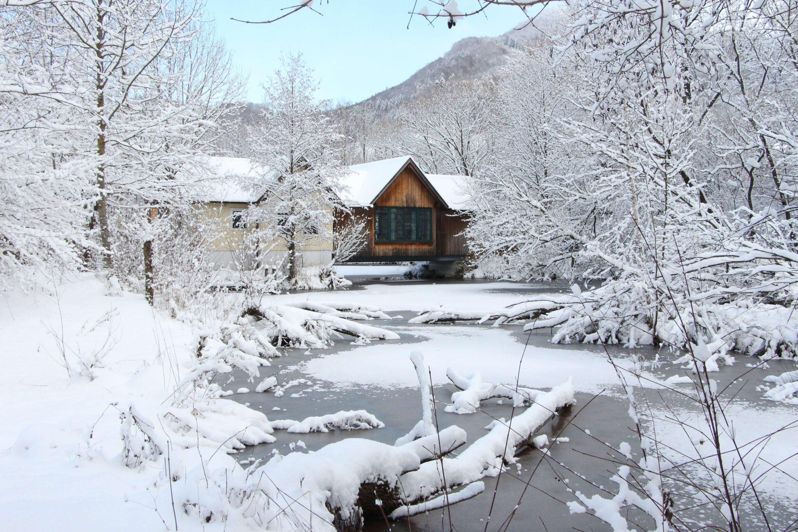 Winterkuscheln im Steinschalerhof