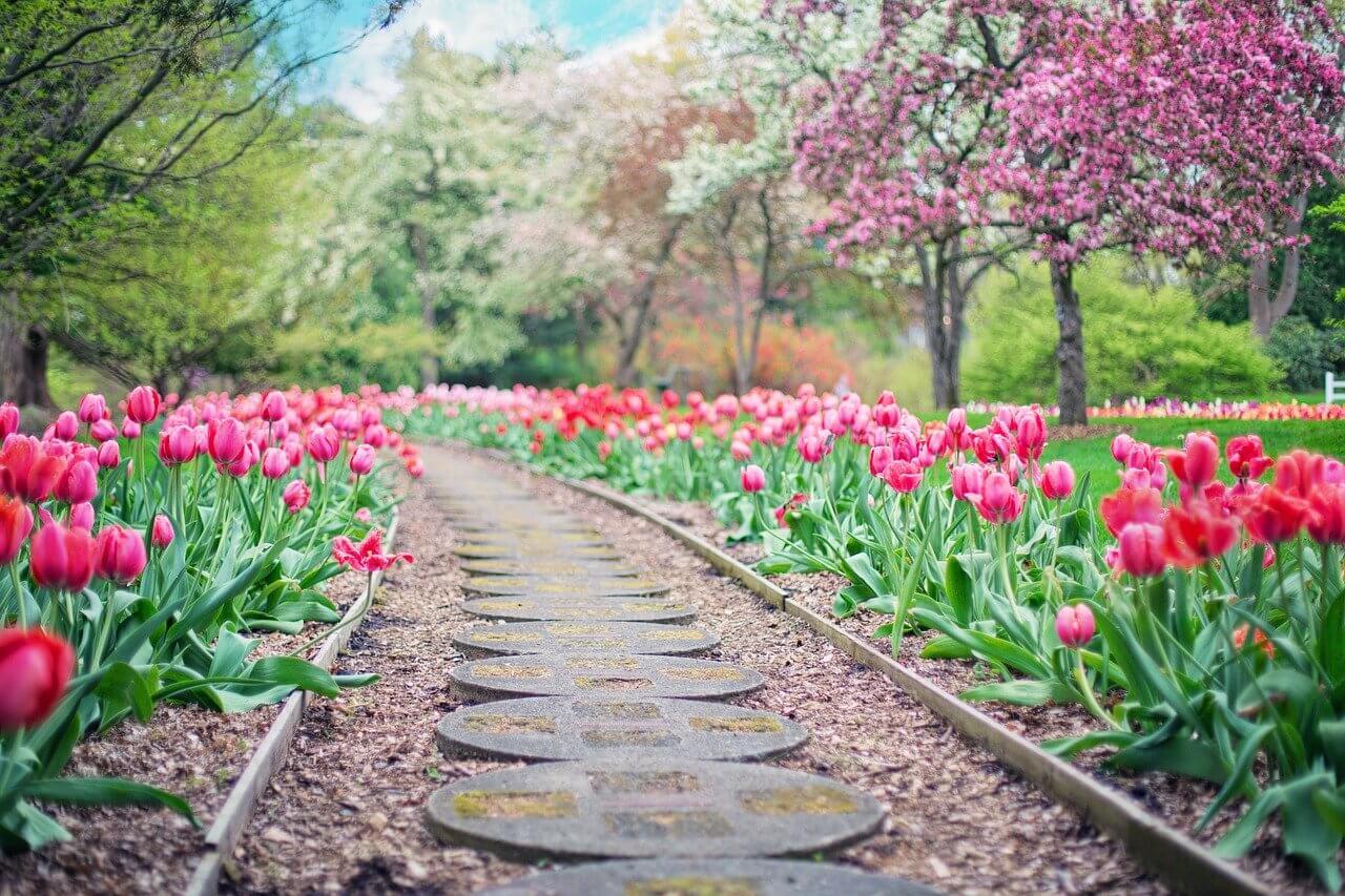 10 To Do's für deinen Garten im Frühling