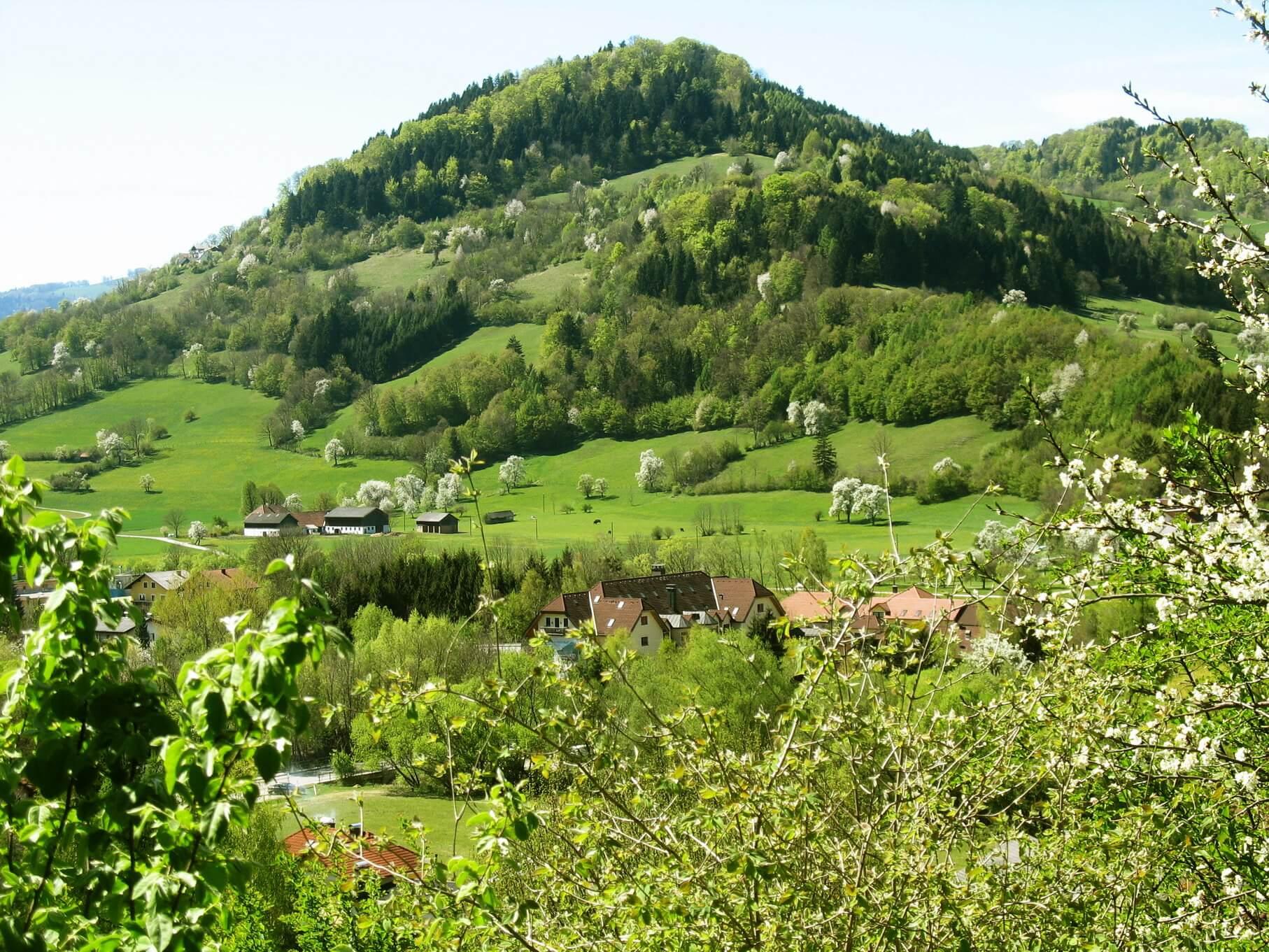 Blick auf den Fronberg im Mostviertel -Steinschalerhof