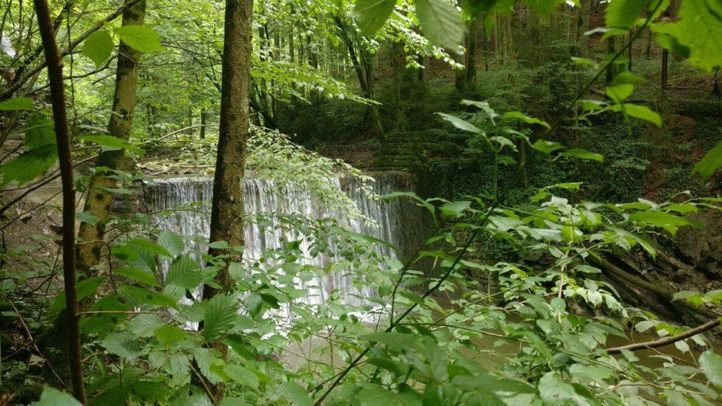 Waldbaden im Naturidyll Hotel Hammerschmiede
