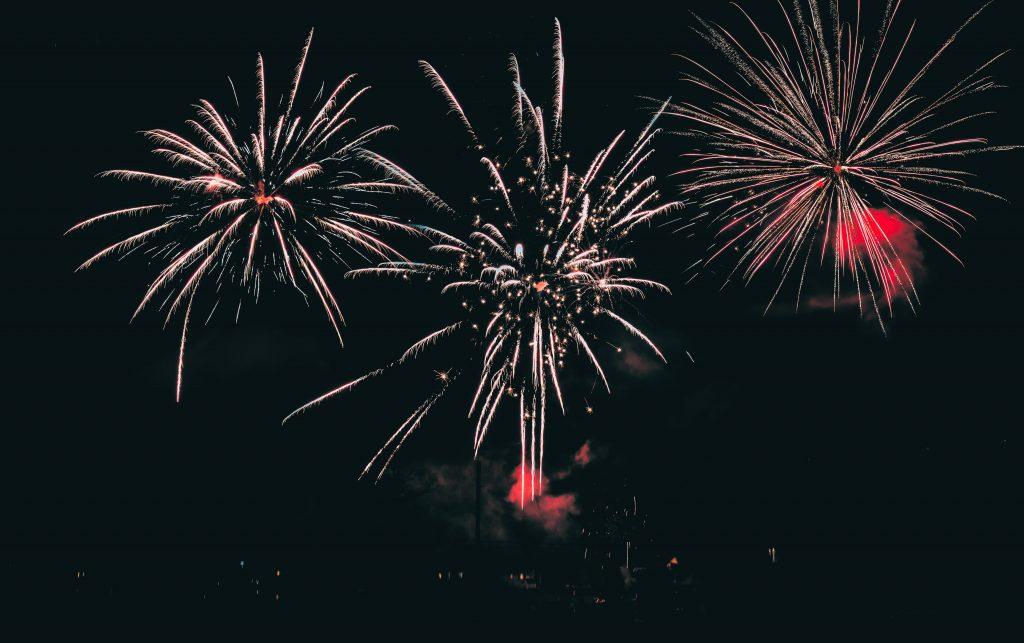 Erzfeind Feuerwerk: Vielen Tieren macht die Knallerei zu schaffen.