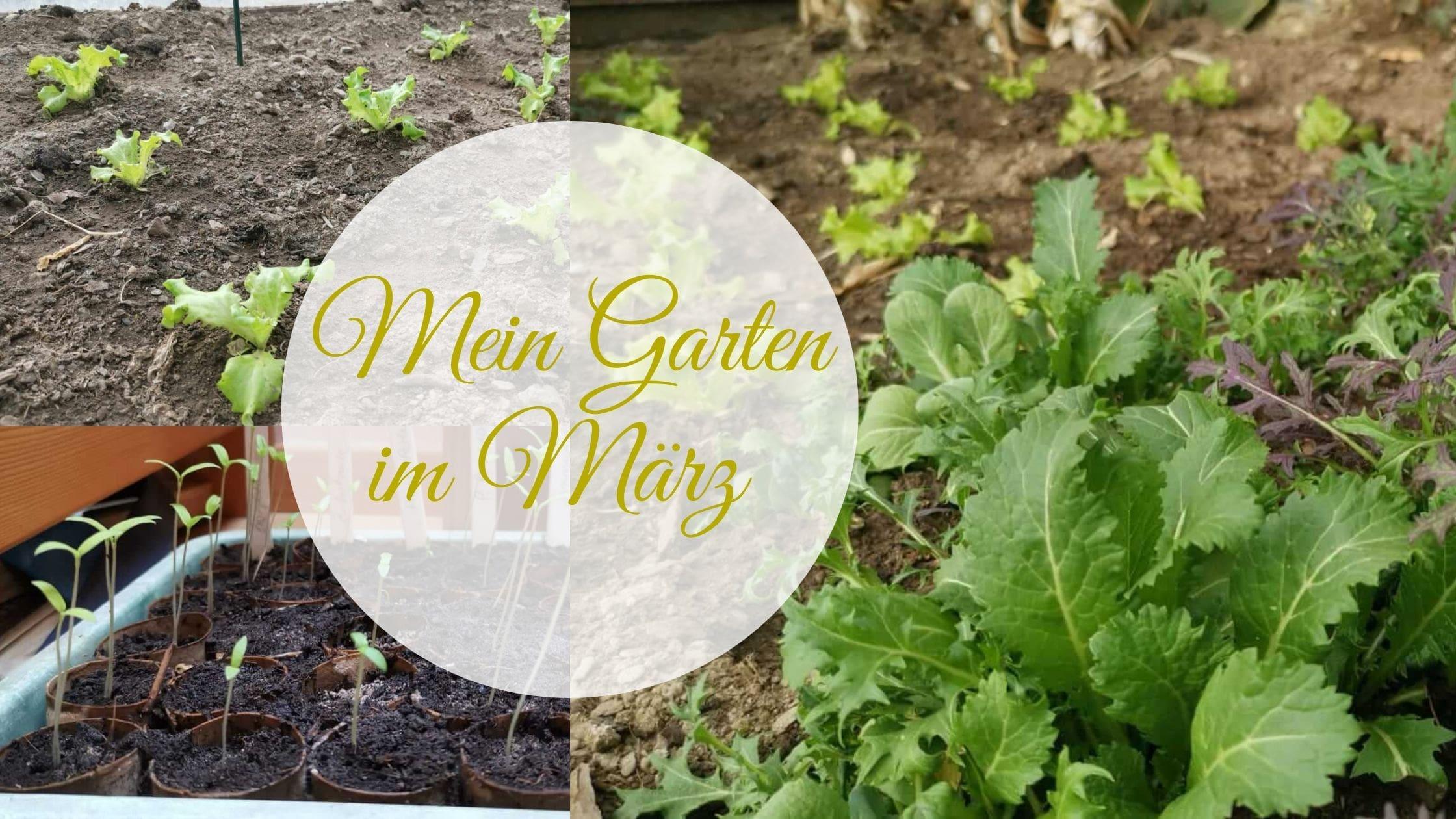 Mein Garten im März Naturidyll Hotels