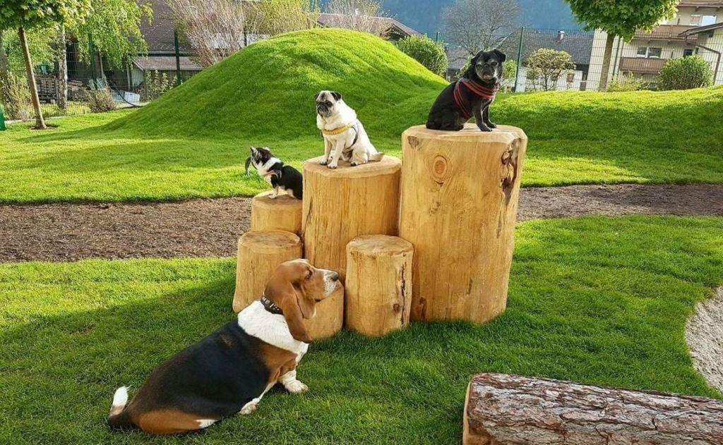 Hundespielplatz im Gartenhotel Magdalena