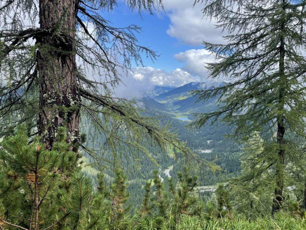 Wanderung Tappenkarsee Naturidyll Hotels ©Anna Pöllabauer (6)