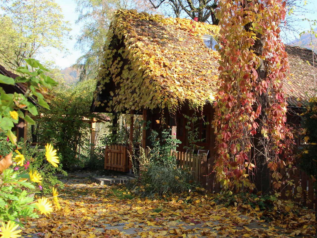 Gartenhaus im Herbst Naturidyll Hotel Steinschalerhof