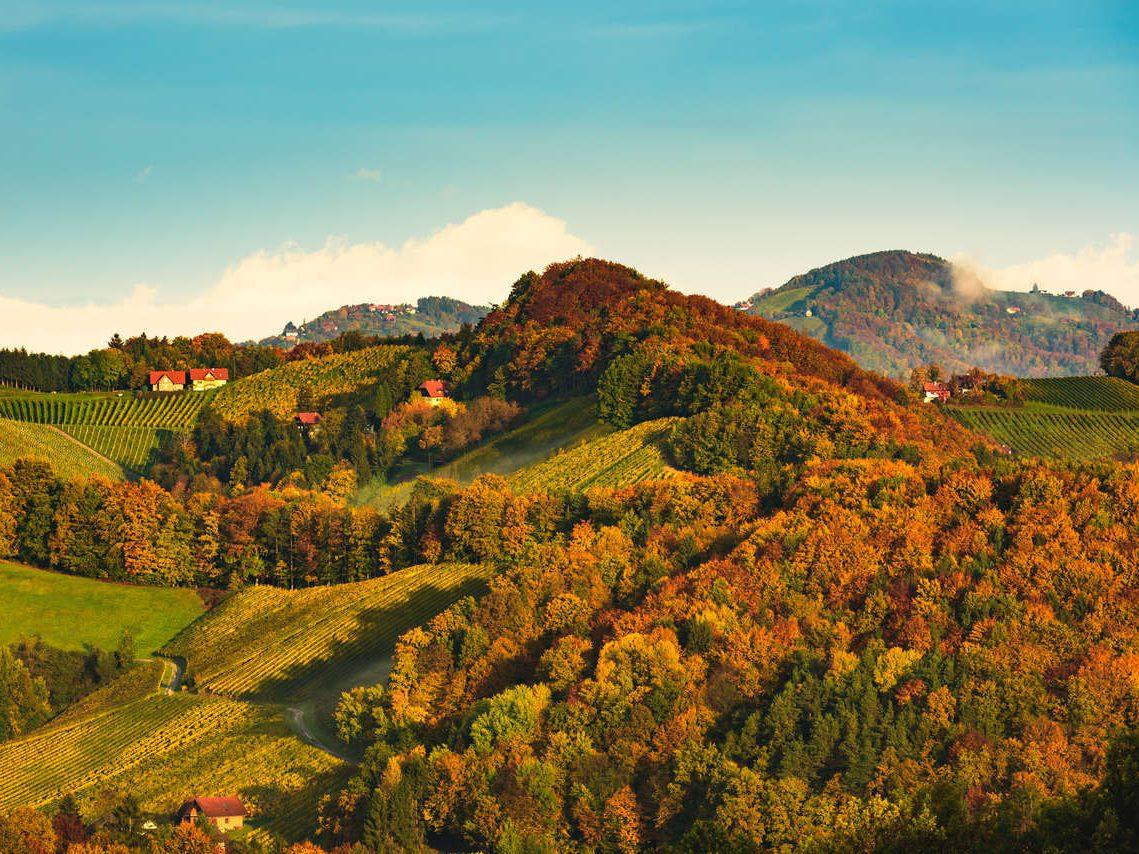 Herbst im Südburgenland Naturidyll Hotels