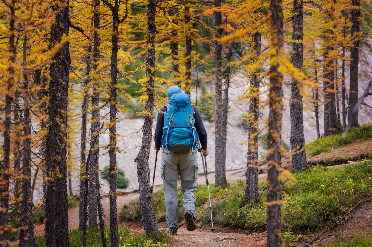 Wandern in den Naturidyll Hotels im Herbst
