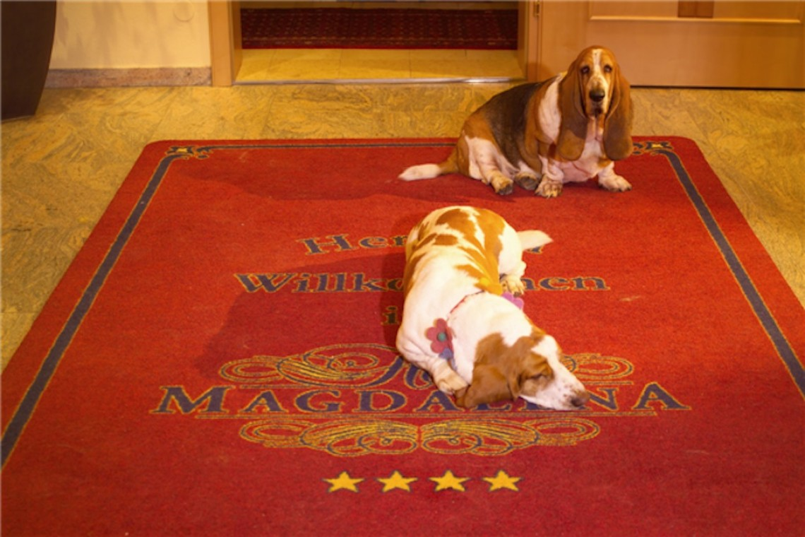 gartenhotel magdalena