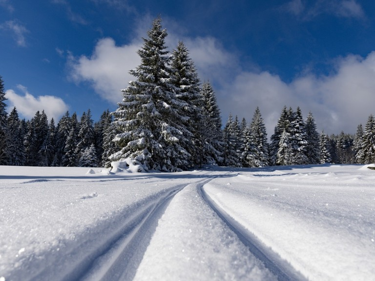 Langlaufen in Österreich