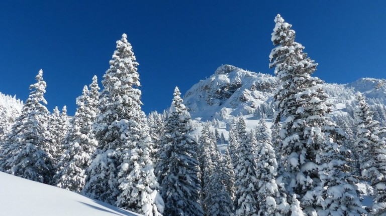 Hotel Metzgerwirt Skikurzurlaub